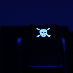 "Max Keyboard Custom R4 ""Skull w/ Crossbones"" Backlight Cherry MX Keycap"