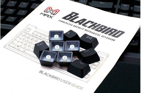 Max Keyboard Blackbird Tenkeyless (TKL) Cherry MX Backlit Mechanical Keyboard